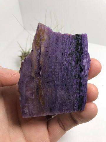 Charoite - C25 - 45.33g - Earthly Secrets