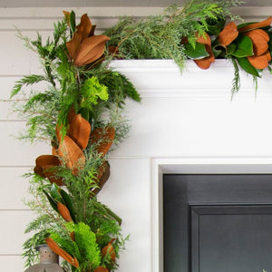 all things outdoor evergreen