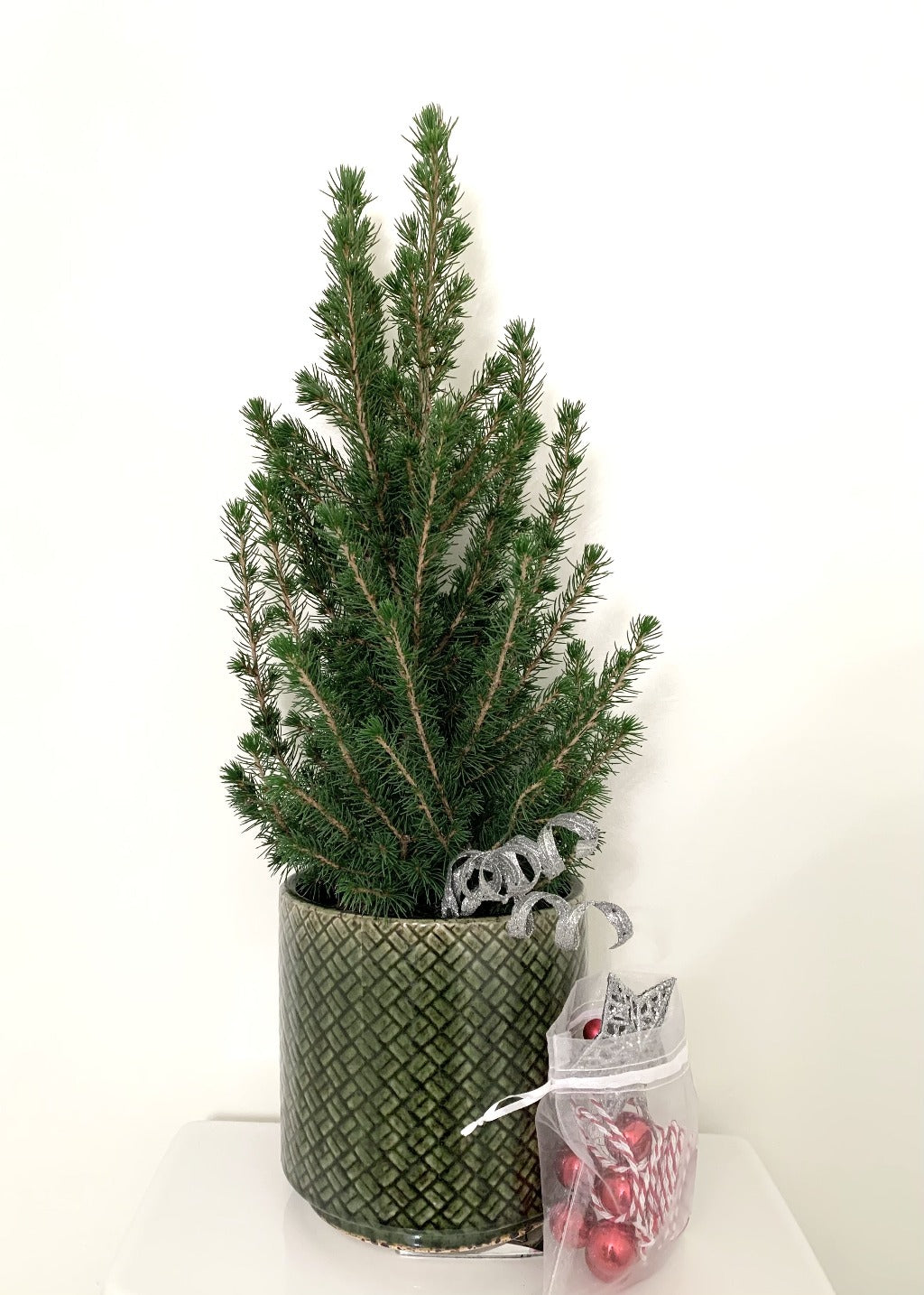 diy alberta spruce christmas tree with decorations