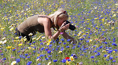 Fionna Bottema taking pictures in a field of flowers
