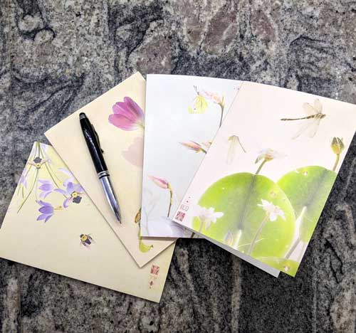 Dragonfly and bee note cards