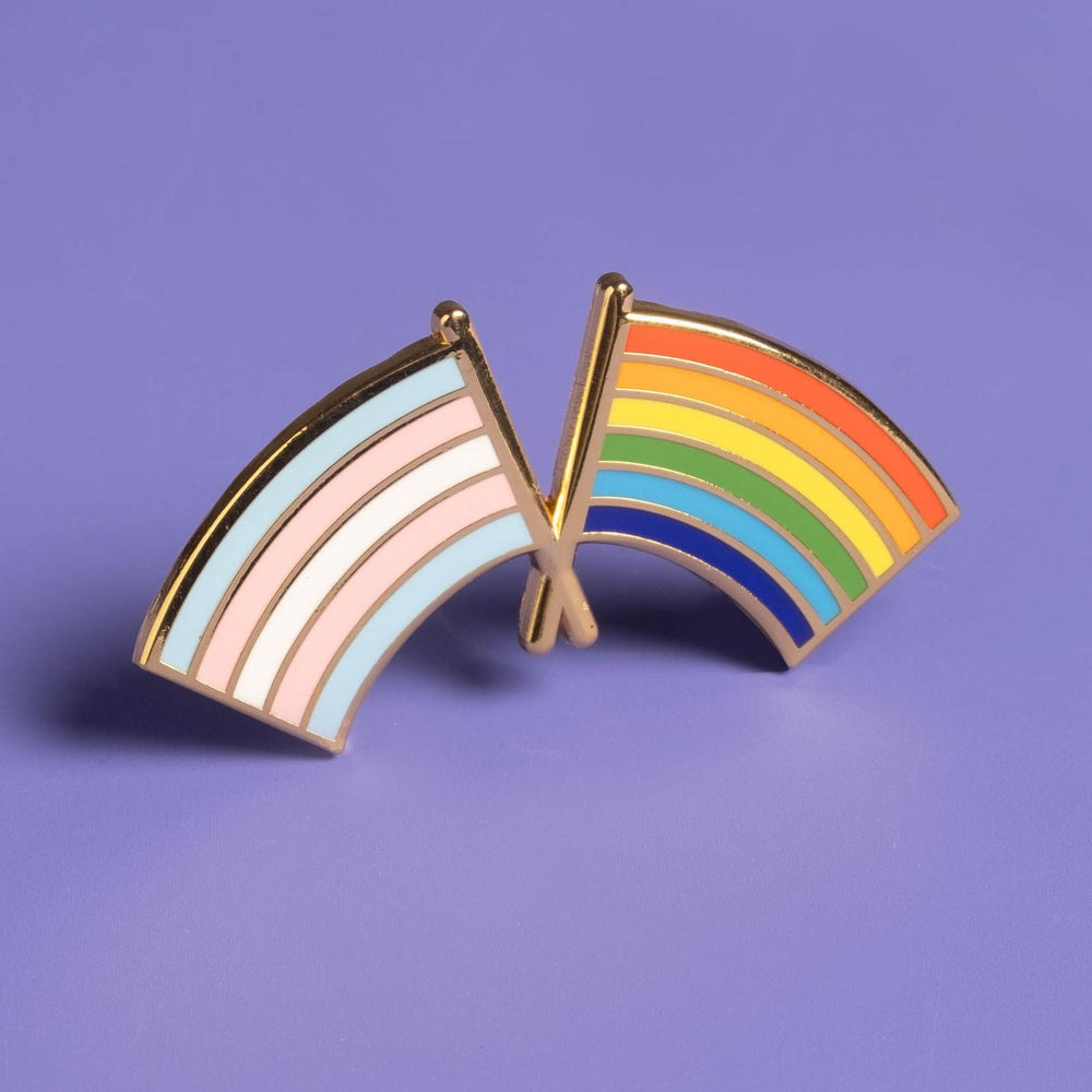 Trans and LGBTQ+ Pride Flag Combo Pin