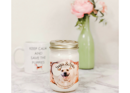 Dove's Sugar and Spice Candle  - Snickerdoodle