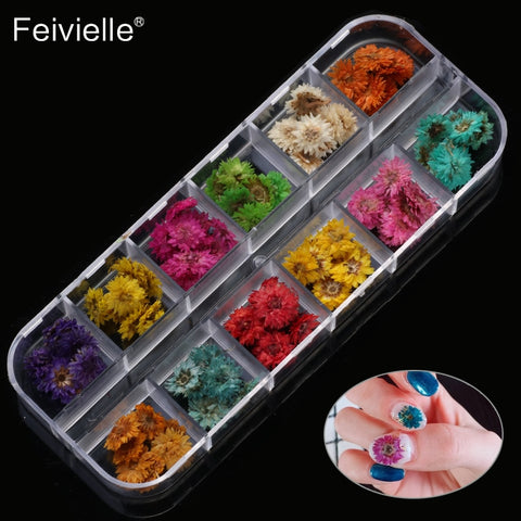Colorful 3D Dry Flowers Sticker for Nail Art - MyShimi.com
