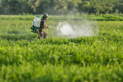 UN busts myth that pesticides are necessary to feed the world