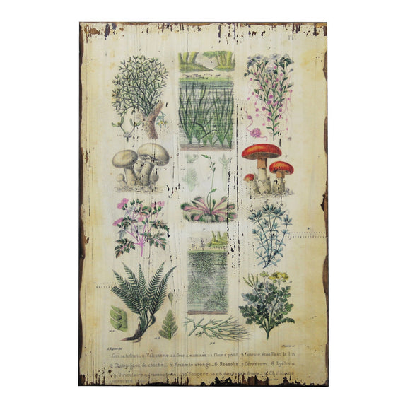 Botanical Wall Plaque Traditional - Diamond Home USA