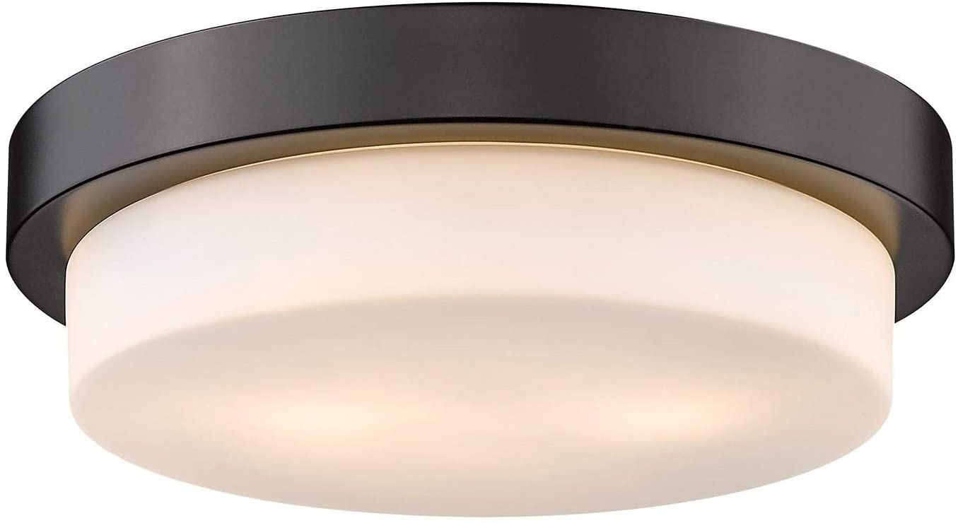 Family Flush Mount Black Transitional Steel Dimmable