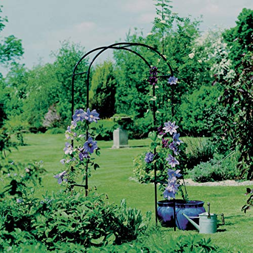 Black Metal Garden Arches Standing Rounded Rustic Circular Top Backyard Sturdy Outdoor Decorative Steel