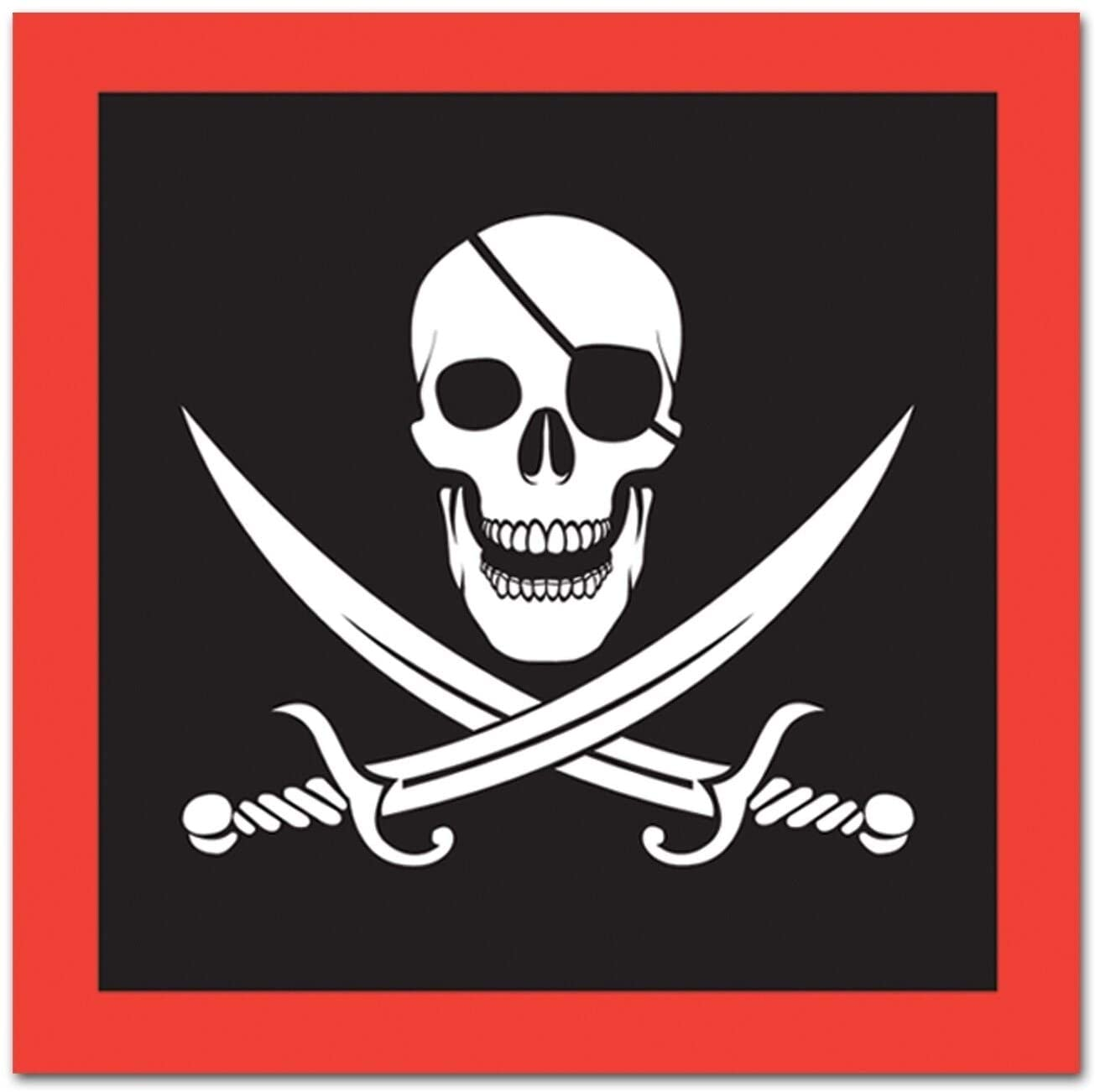 2 ply Pirate Theme Napkins 12 Pack (16/pkg) Black Red White Modern Contemporary Square Organic