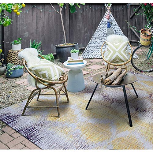 Paradise Indoor/Outdoor Area Rug 3'11
