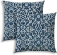 Indigo Indoor/Outdoor Pillows Sewn Closure (Set Two) N/ Color Graphic Modern Contemporary Polyester Water Resistant