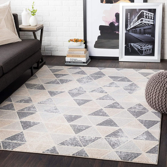 Taupe Distressed Contemporary Area Rug 5'3