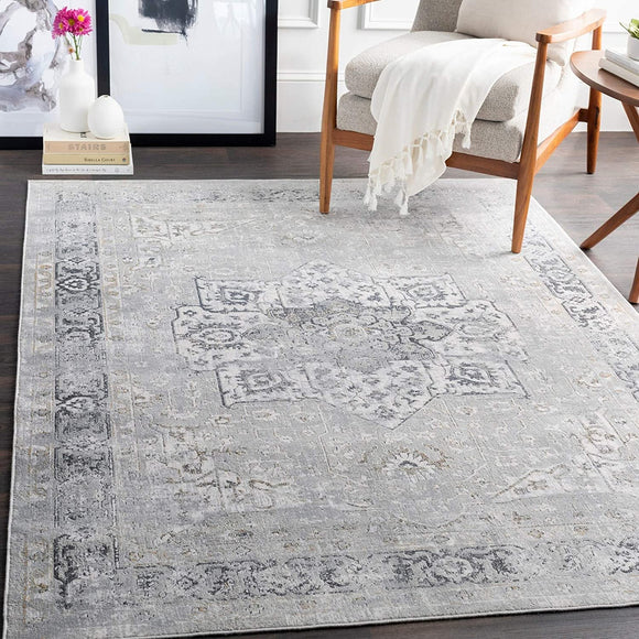 MISC Traditional Area Rug 2'7