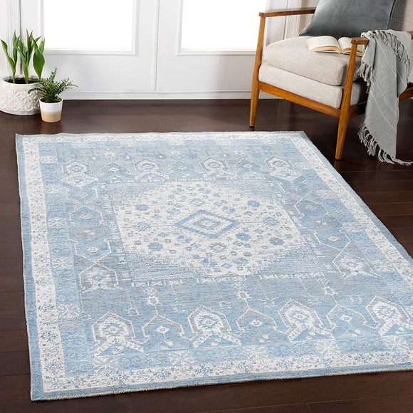 MISC Denim Updated Traditional Area Rug 5'3