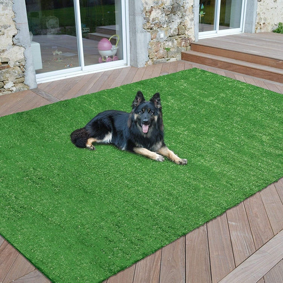 Outdoor Turf Rug Green Artifical Grass Out Door Lawn Patio Landscape Theme Lawn Patio Area Rugs Lawncare Polypropylene 6'6