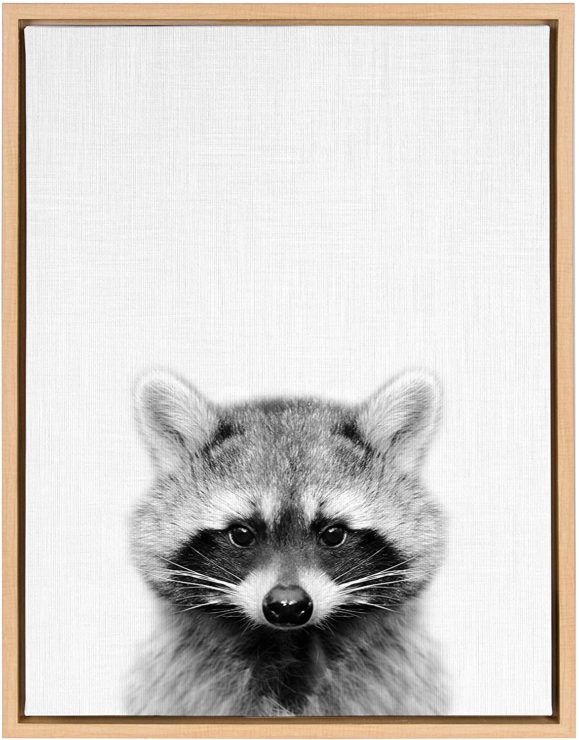 Raccoon Portrait Framed Canvas Art Natural 18x24 Modern Contemporary Rectangle