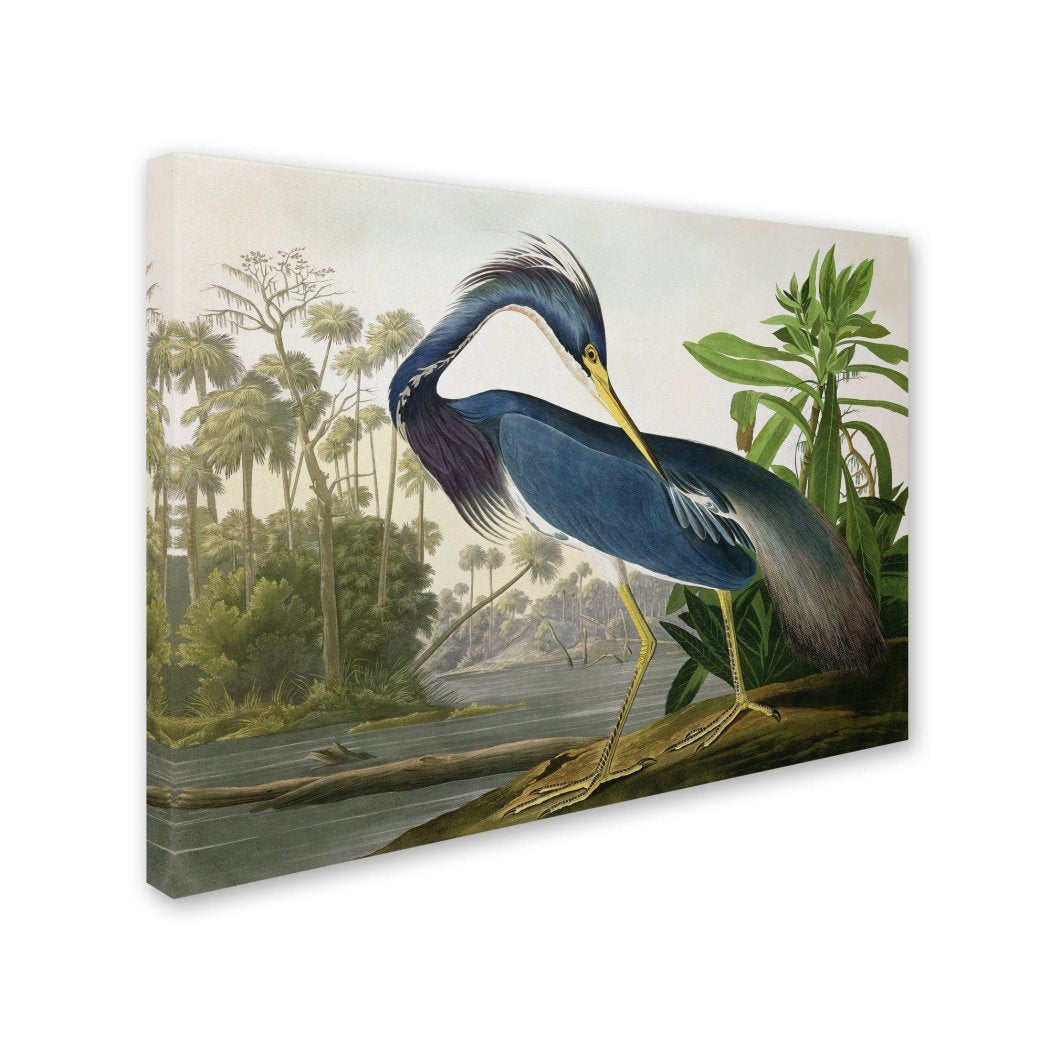 Heron Bird Pattern Wall Art Rectangle Birds Theme Hanging Picture Freshwater Coastal ArdeidBeach Tropical
