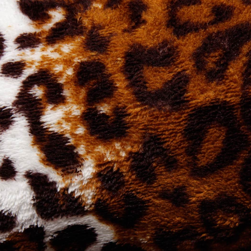 Off Leopard Blanket Microplush Bedding Big Cat Themed Spotted Safari Wild Animal Spots Pattern African Zoo