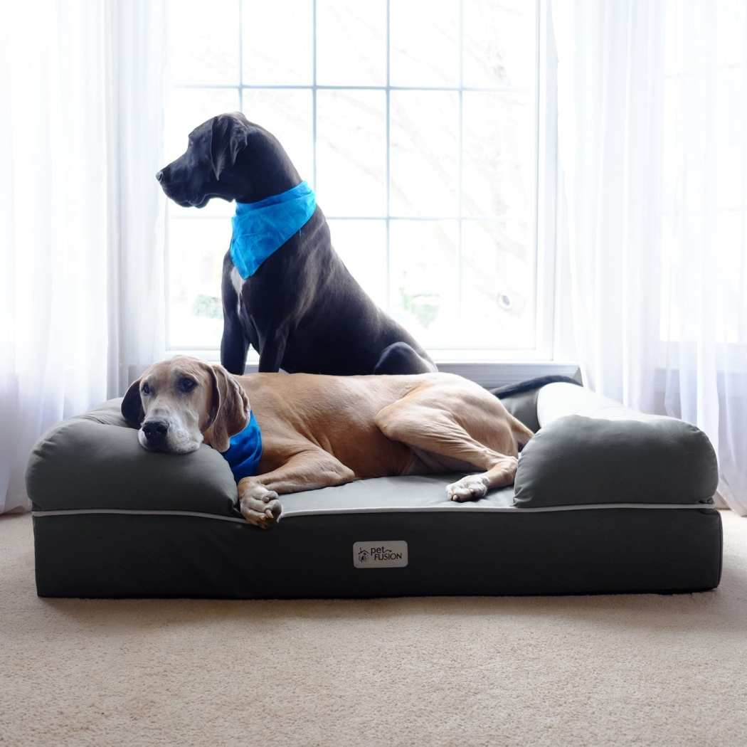 Extra Large Pattern Dog Bed Memory Foam Cozy Bolsters Pet Bedding Lounge Rectangle Features Water Stain Resistant Removable Cover Anti Tear