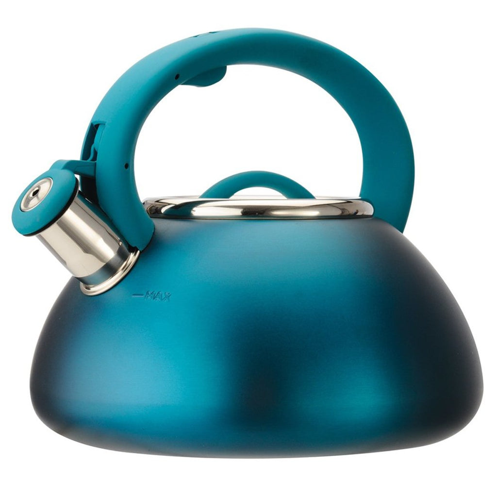 Cute Stylish Tea Kettle Pretty Sleek Design Stovetop Hot Water Pot Tea Soups Whistling Stainless