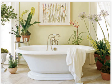 Earl Double Pedestal Bathtub - American Bath Factory