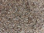 Load image into Gallery viewer, Etna's Flax Seeds