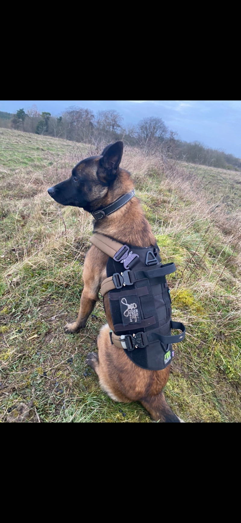 Search & Rescue Harness (Polymer buckles)