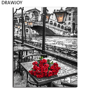 "DIY Painting By Numbers - Beautiful Red Roses (16""x20"" / 40x50cm) - GenieMania"
