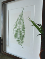 Botanical Fern Watercolour Print