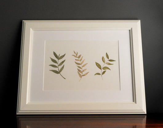 Trio of watercolour leaves print