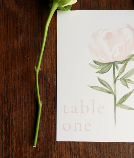 Pink Garden Rose Table Number / Name Cards