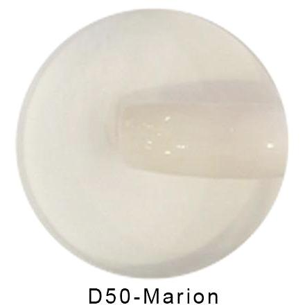 Revel Dip Powder - 050 MARION