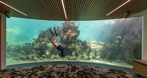 Put on your Nicolas Alexander swim trunks and go for a dive at Daydream Island's underwater observatory