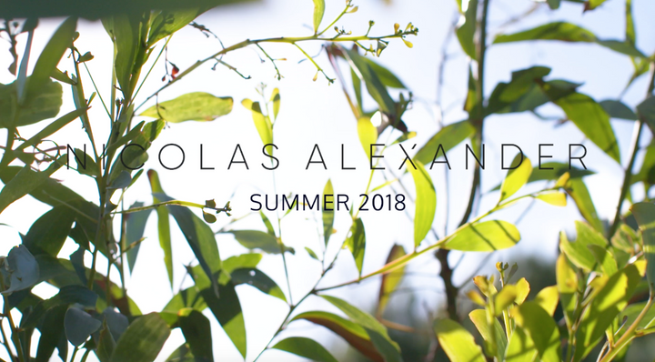 Nicolas Alexander is the must-have men's swimwear brand