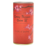 The Jonsteen Company - Flowering Cherry Blossom | Seed Grow Kit