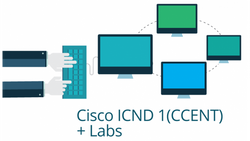 100-101 - Interconnecting Cisco Networking Devices Part 1 Live Lab