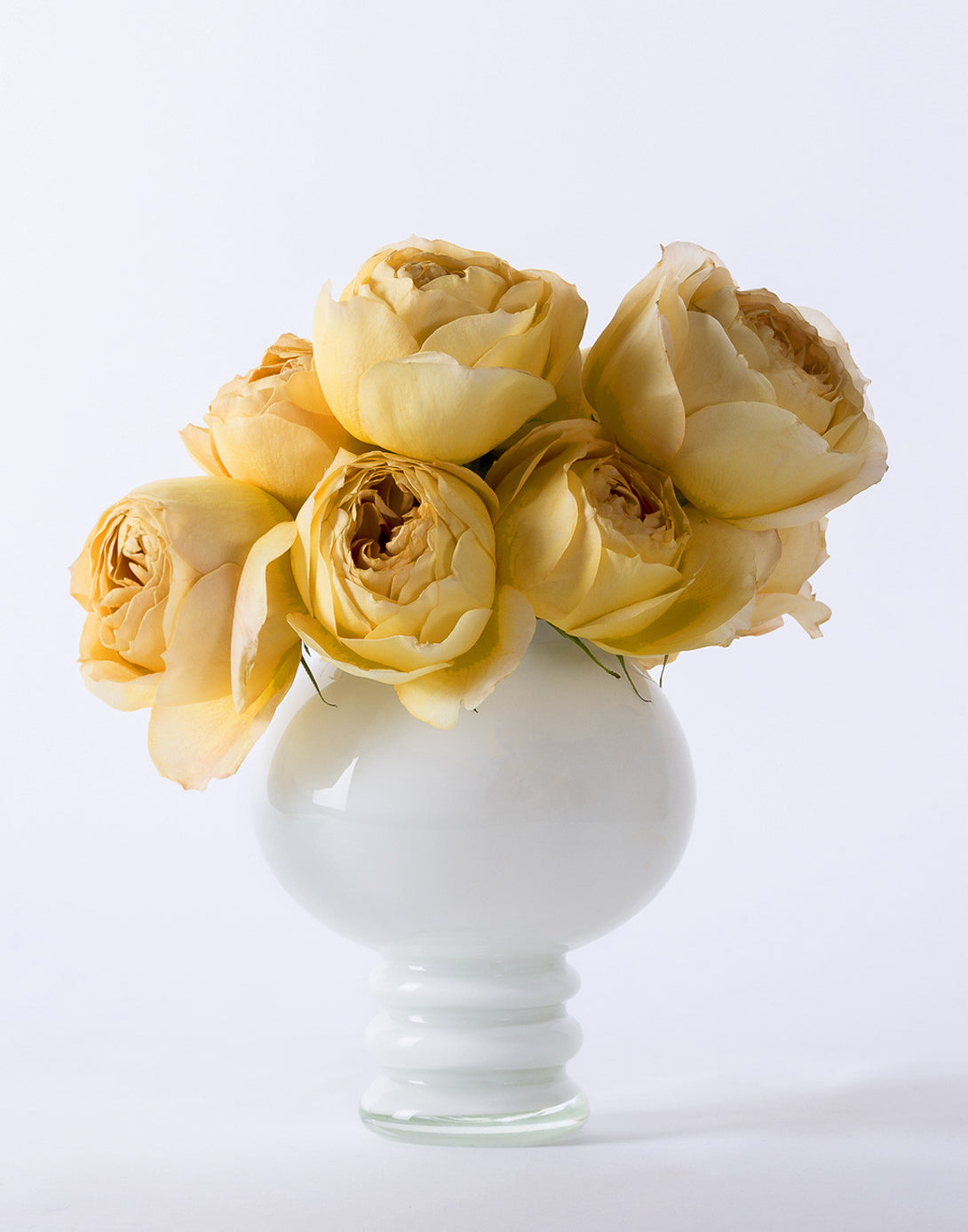 White vase with yellow garden roses