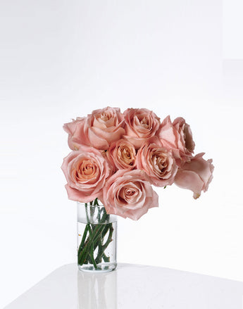 Dozen Pink Roses in Vase on white