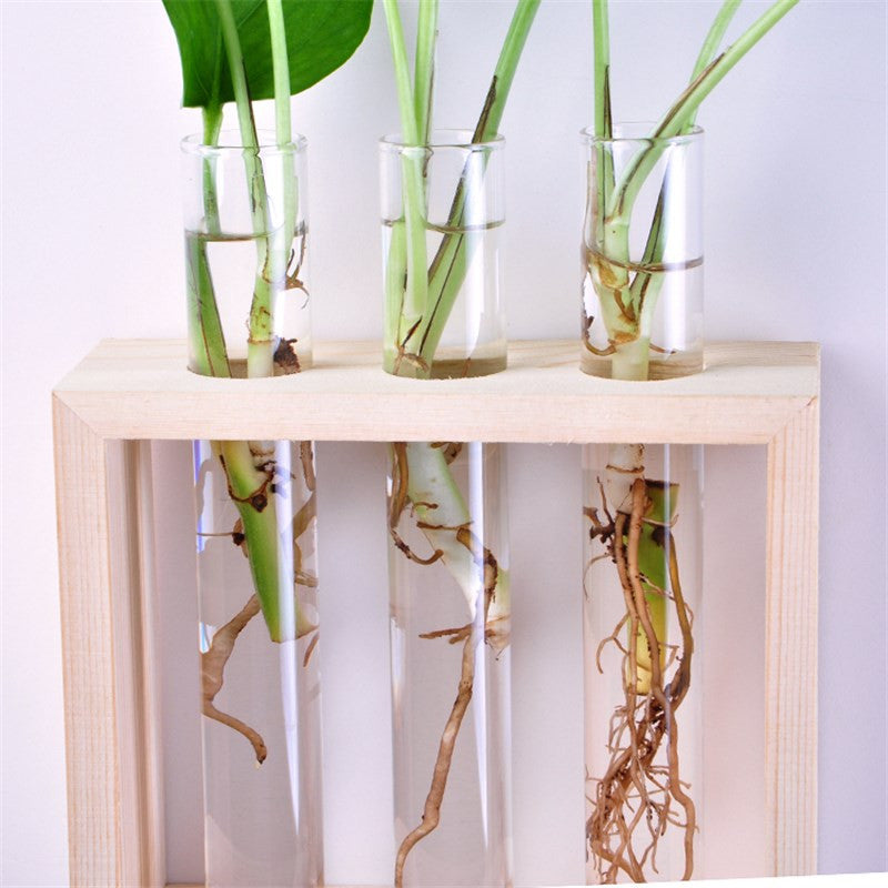 Hanging Flower Vase with Wooden Stand Terrarium