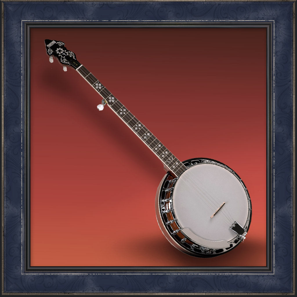 Banjo, Songster Resonator
