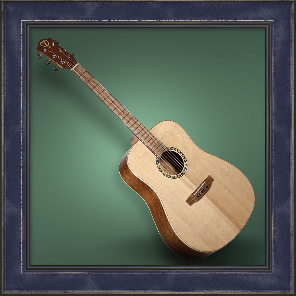 Guitar, Teton Dreadnought, 100 Series
