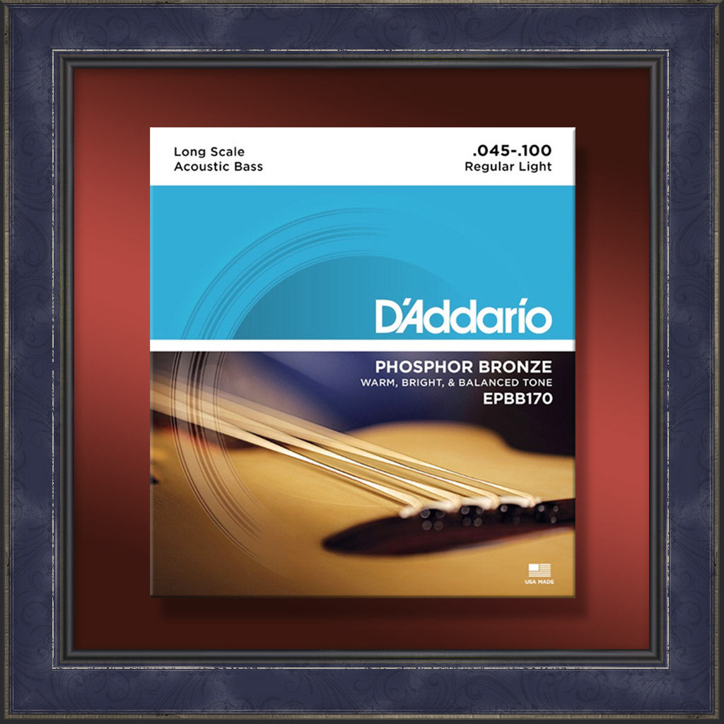 String Set, EPBB170, Acoustic Bass Guitar