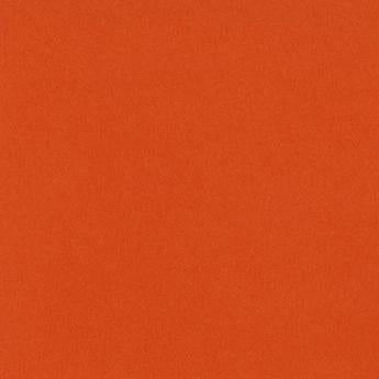 Monochromatic - Bazzill Orange