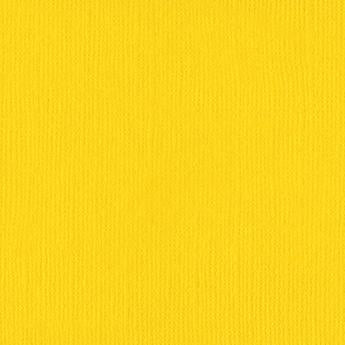 Monochromatic - Bazzill Yellow