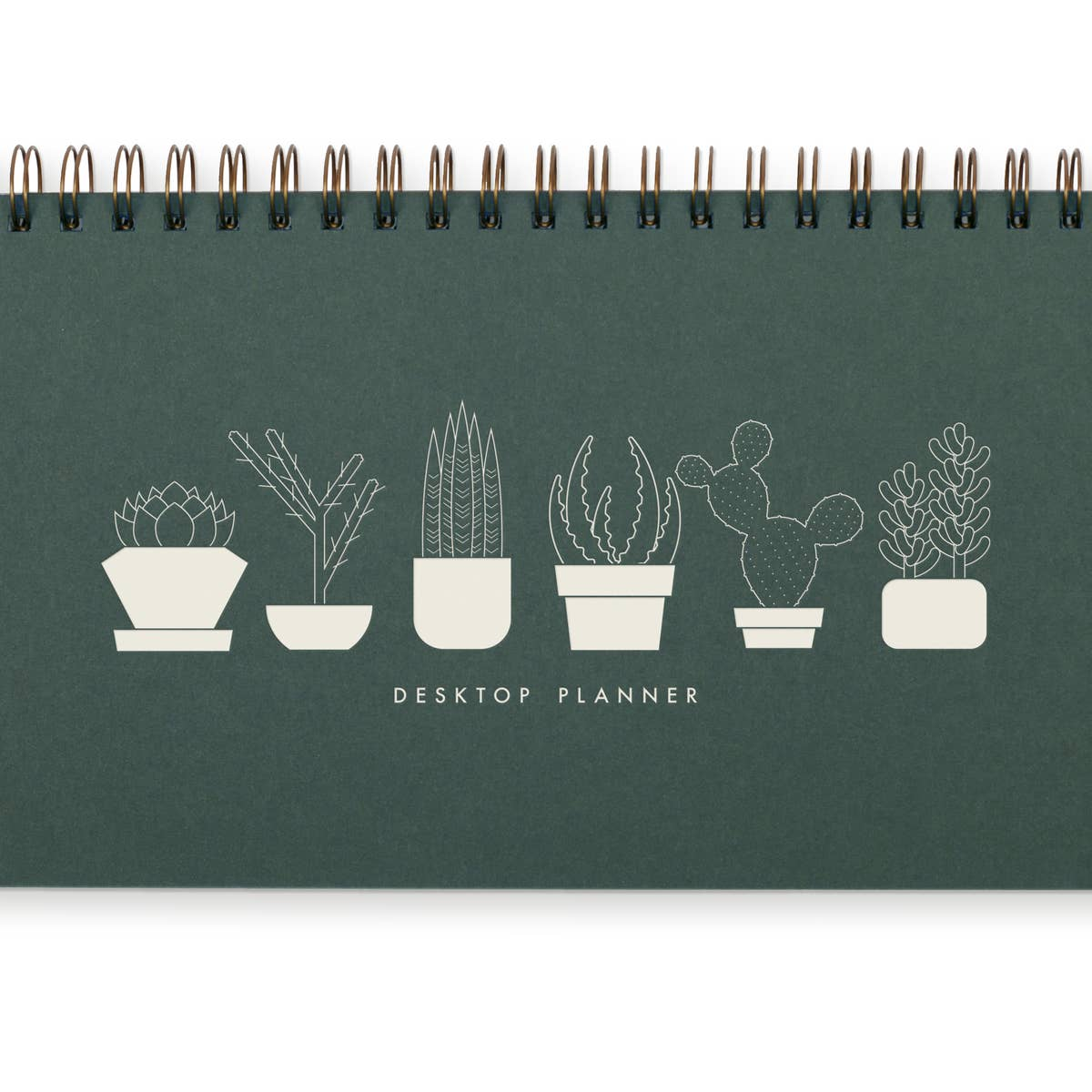 Succulents Weekly Planner