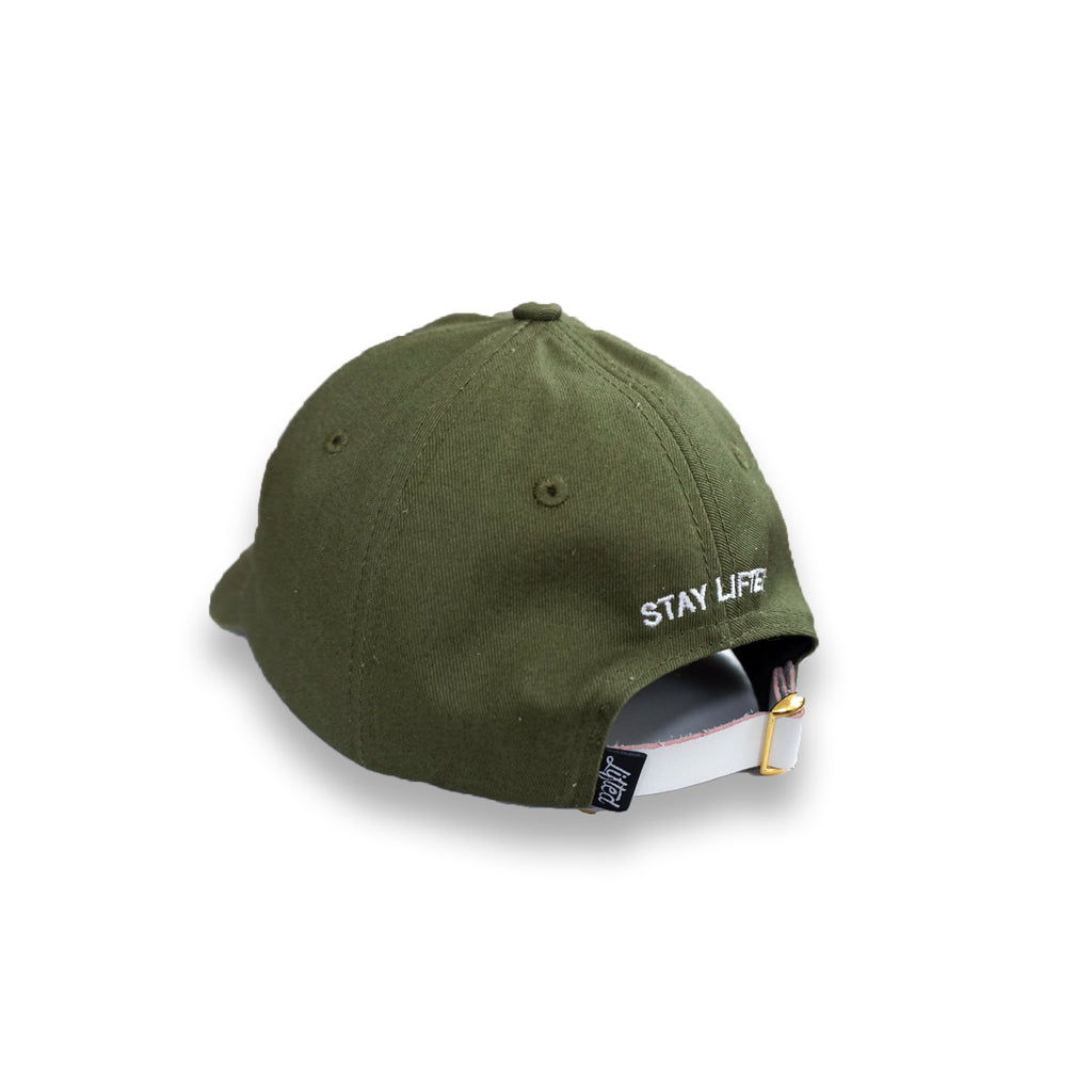 Winter Green Dad Hat