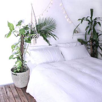Bamboo Doona Cover Set - White