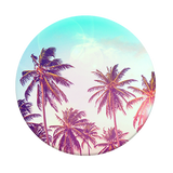 popsocket_on_phone_sale_discount_palm_tree_cali_style