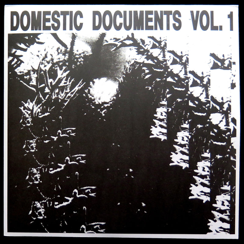 VA - Domestic Documents Vol.1