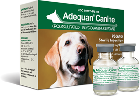 Adequan for Dogs Arthritis Injection What to Expect | Alpha Dog Nutrition